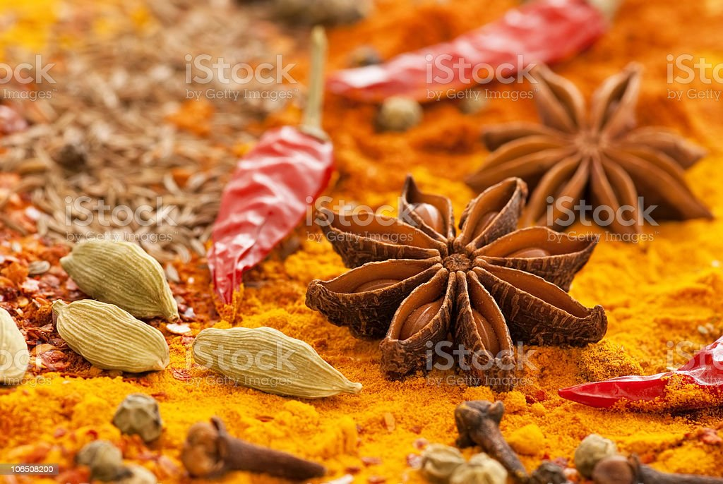 Exotically Spice Collection royalty-free stock photo
