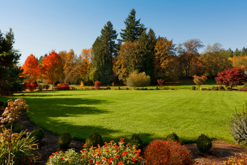 Beautiful, large lawn.