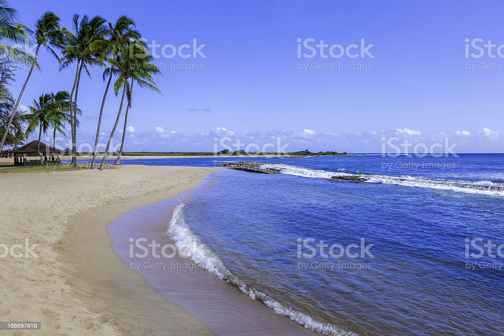 expansive sandy tropical beach with palm trees and blue water royalty-free stock photo