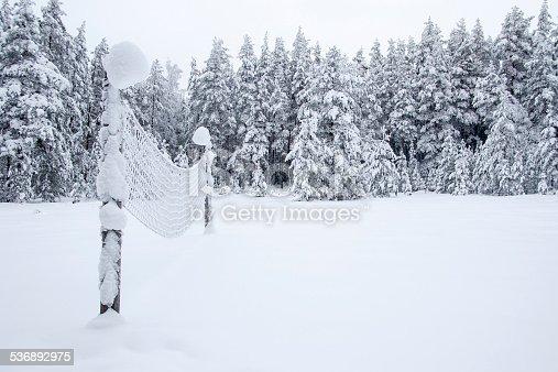 Expectation of summer, Kõrvemaa, Estonia