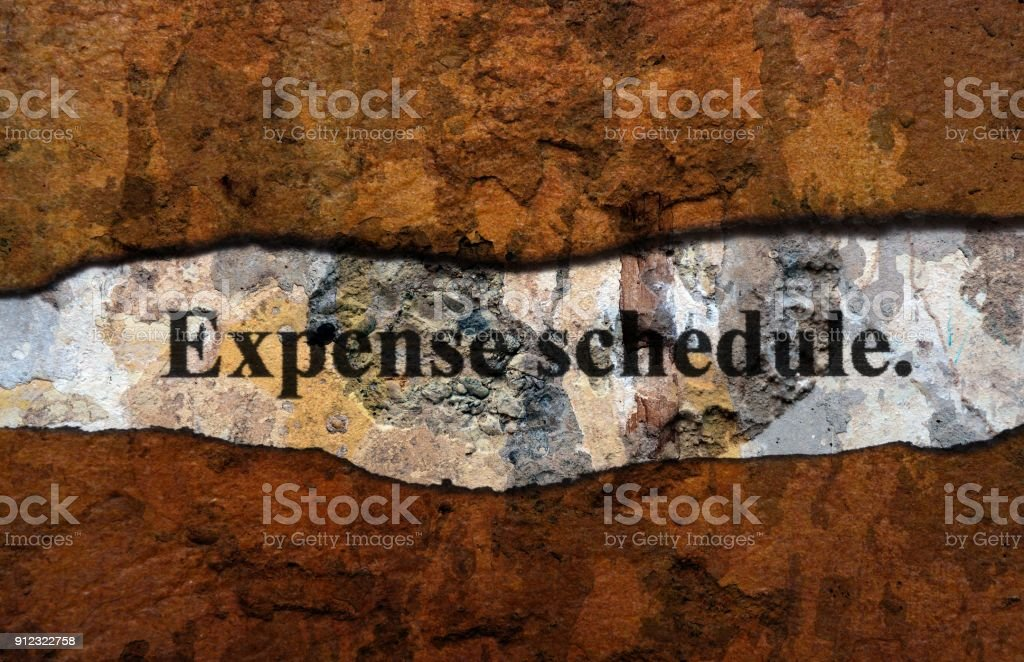 Expense schedule grunge concept stock photo