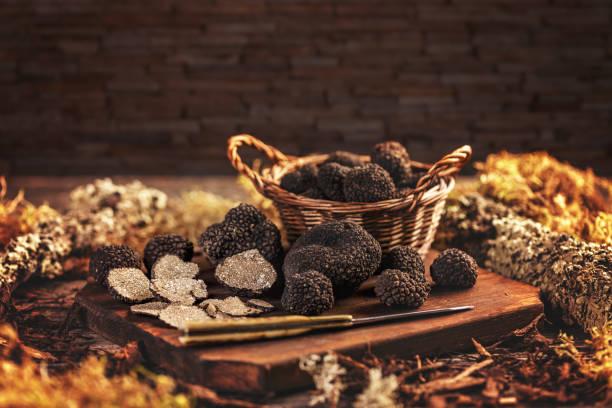 Expensive black truffle mushrooms stock photo