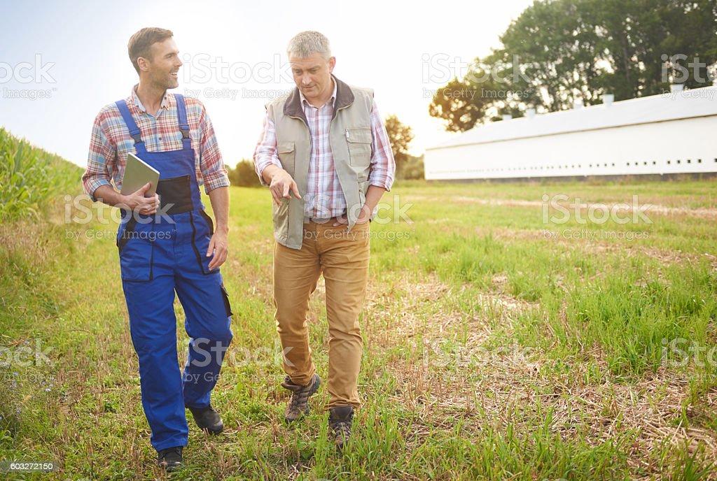 Experienced farmers on the field - foto de stock