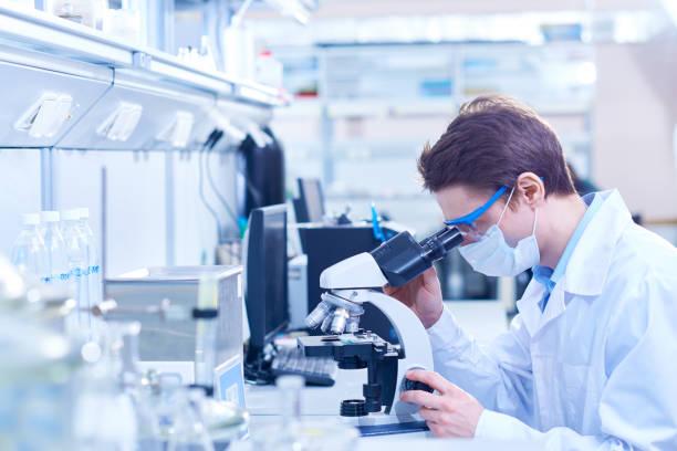 experienced scientist at work - ematologia foto e immagini stock