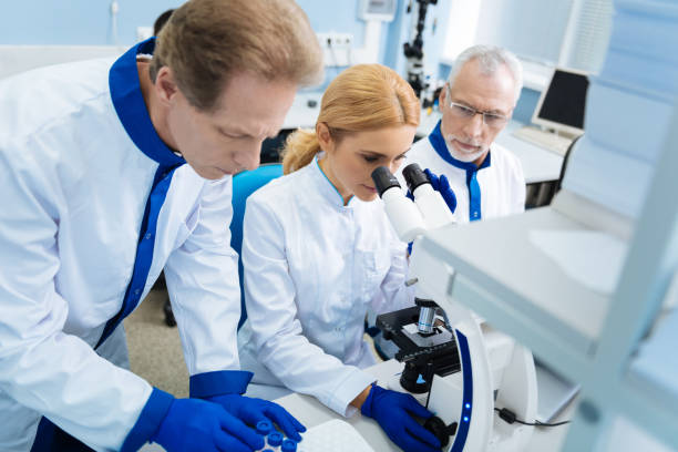 Experienced scientists developing medicine in the lab Conducting research together. Concentrated grey-haired bearded old scientist holding a tablet and looking at a blond young researcher sitting next to him and working with a microscope dna purification stock pictures, royalty-free photos & images