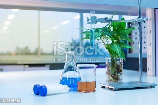 1097010784istockphoto Experiment chemical in Lab. 629375740