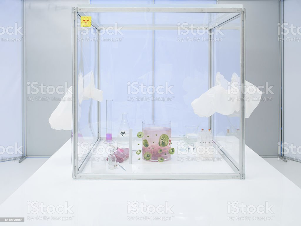 experiment equipment and materials in sterile chamber royalty-free stock photo