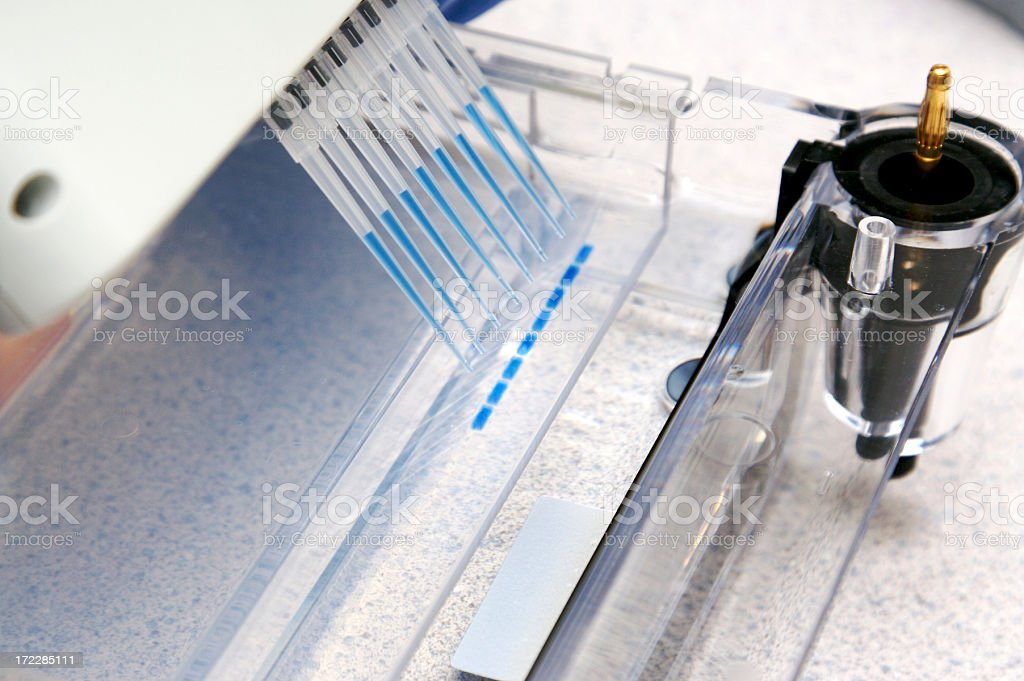 DNA experiment royalty-free stock photo