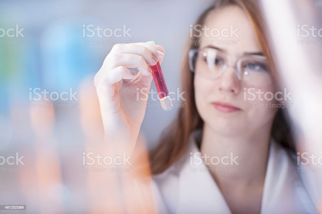 Experimenting in the laboratory stock photo