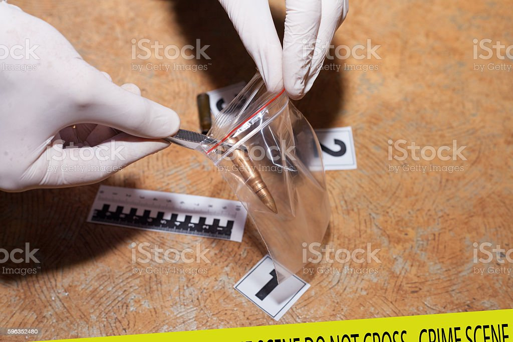 Expert examines a bullet at the crime scene royalty-free stock photo