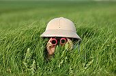 istock Explorer in the Field 157180213
