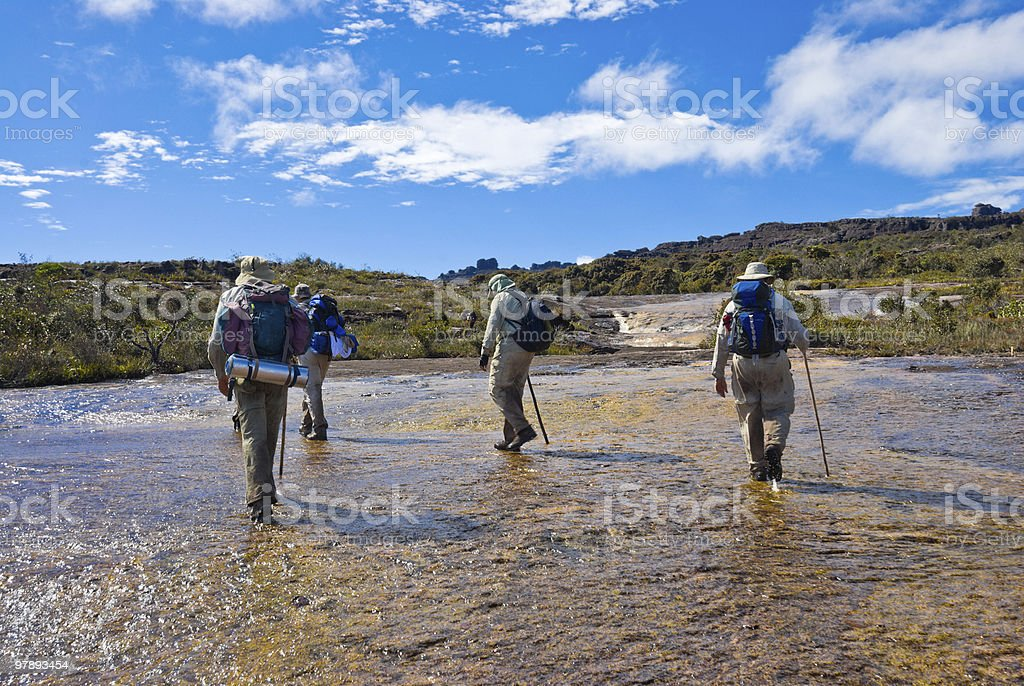 Explorers walking in a river royalty-free stock photo