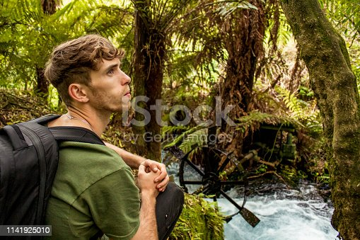 867295412 istock photo Exploring a Dense Forest 1141925010