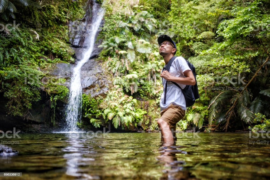 Exploring a Tropical Rainforest in Okinawa Japan stock photo
