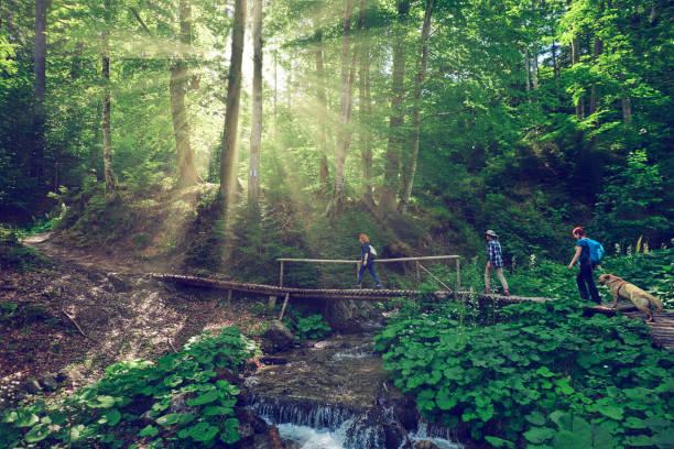exploring amazing nature stock photo