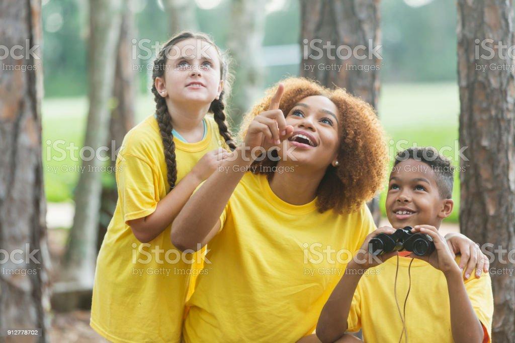 Exploration de la nature au camp d'été - Photo