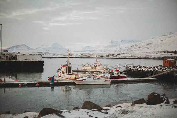 Erkunden Sie die Küste von Island – Foto