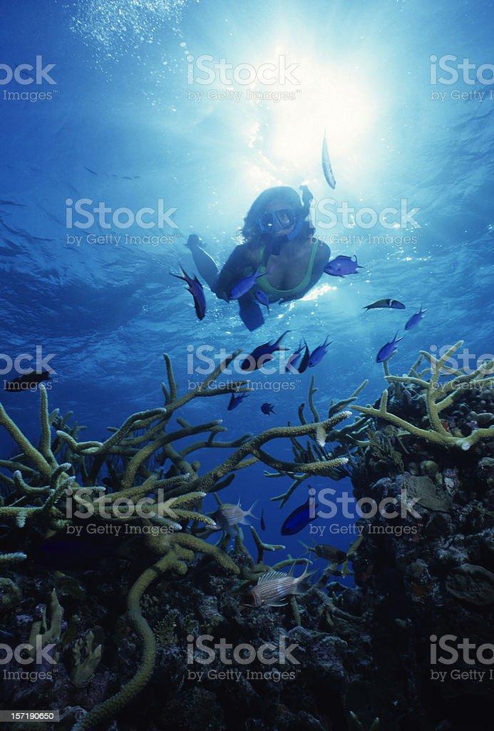 Exploring The Deep stock photo