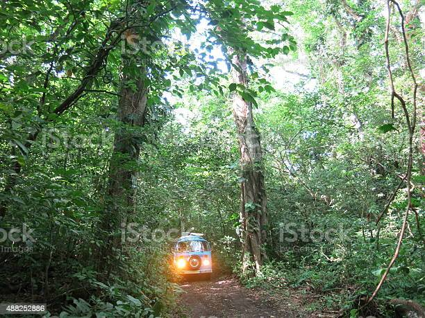 Exploring the Mexican Jungle in an old VW Bus