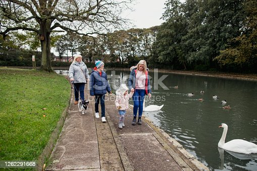A wide shot of a multi-generation family with their pet dog walking along a path next to a pond filled with wildlife at Jesmond Dene in Newcastle-Upon-Tyne. They are about to feed the swans.