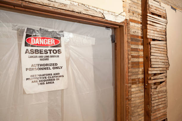 Exposed Wood Wall with Doorway Sealed Off for Asbestos Abatement stock photo