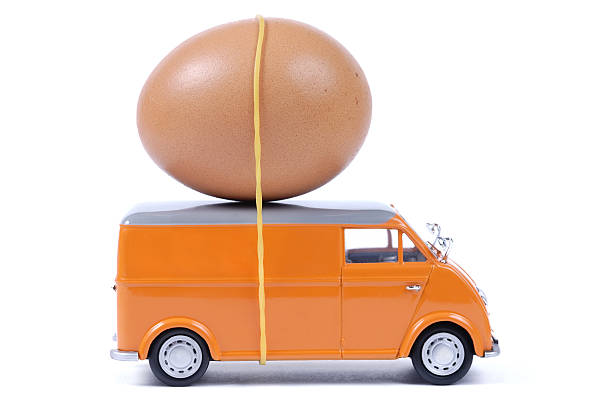 express-service - eierverpackung stock-fotos und bilder