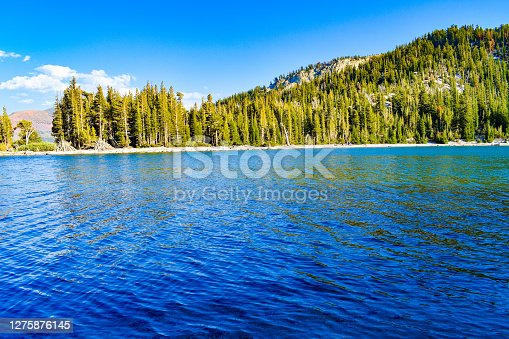 Beautiful exquisite bright blue alpine lake in forest wilderness