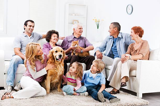 Extended family enjoying at home with their pets picture id170214712?b=1&k=6&m=170214712&s=612x612&w=0&h=q9n9ugoh8iwtpfbllg7qfadposzgz6tcdwawastoid4=
