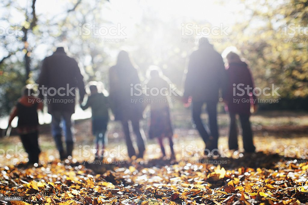 Extended family walking in park in autumn royalty free stockfoto