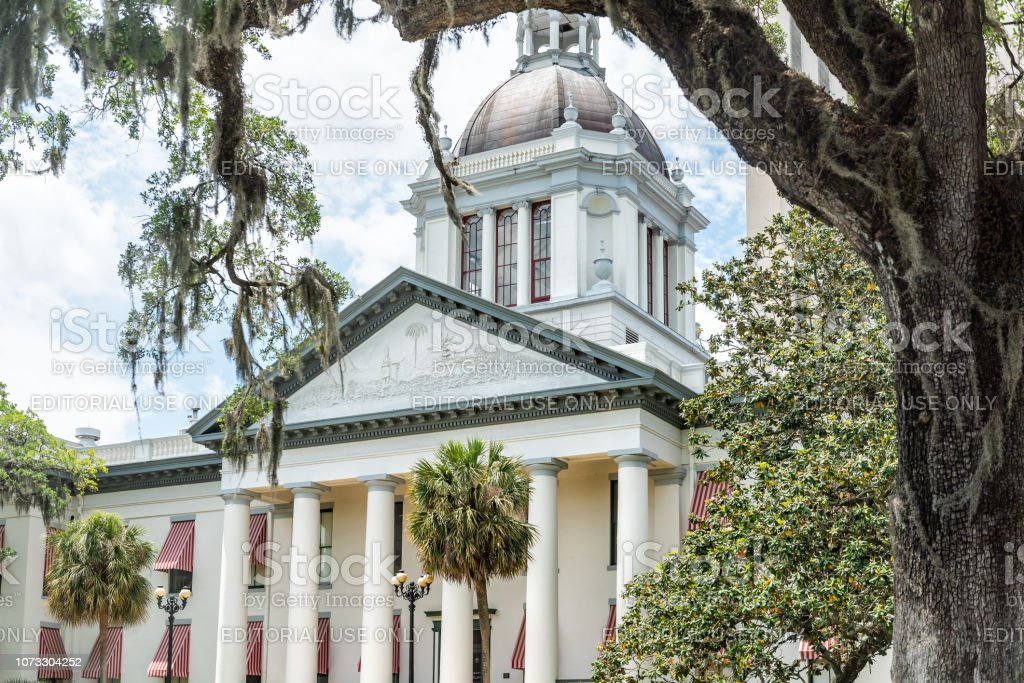 Exterior state capitol building in Florida during sunny day with modern architecture of government, oak tree and spanish moss stock photo