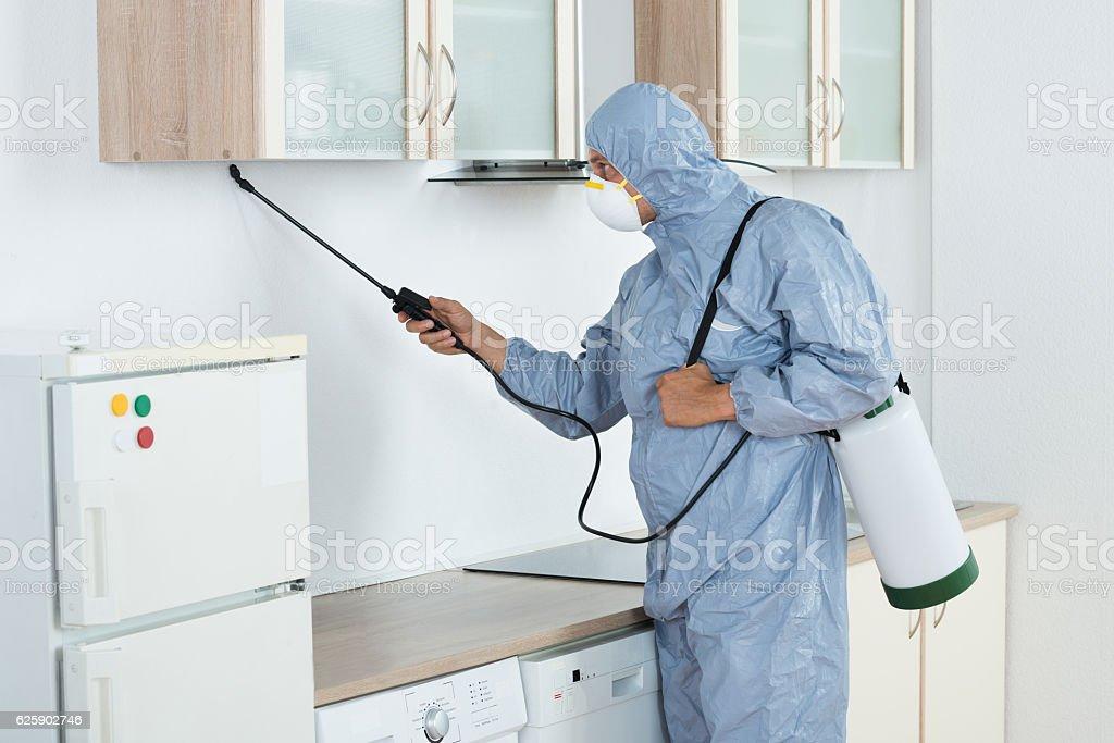 Exterminator In Spraying Pesticide In Kitchen stock photo