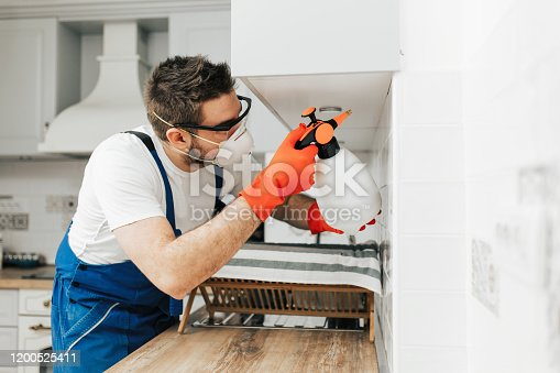 Worker exterminator in protective workwear spraying pesticide in apartment kitchen.