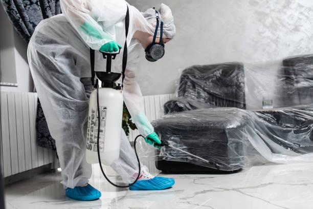 exterminator working - attrezzatura per la disinfestazione foto e immagini stock