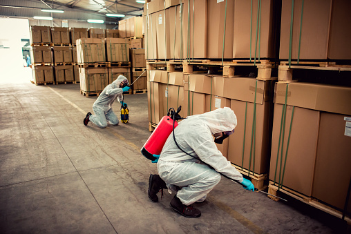 Exterminators in warehouse spraying pesticides with sprayer