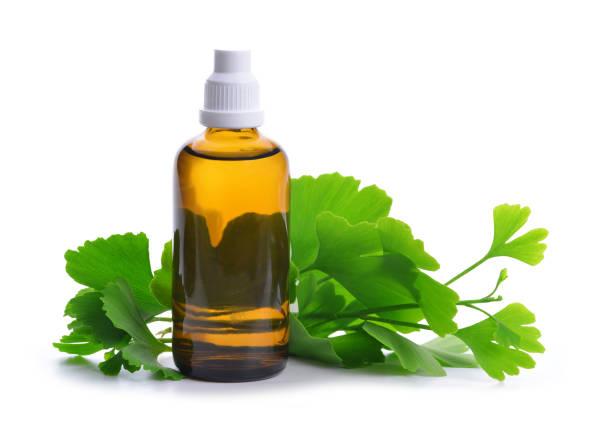 auszug aus der ginkgo in flasche mit grünen blättern. - ginkgo stock-fotos und bilder