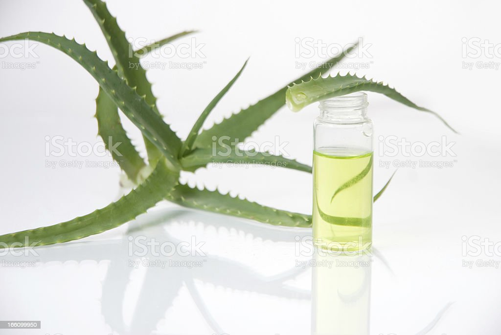 Extract of plants. Natural chemistry. stock photo