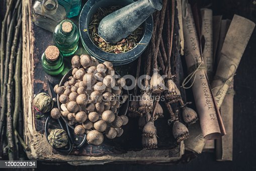 Extraordinary herbalist laboratory with ingredients and herbs