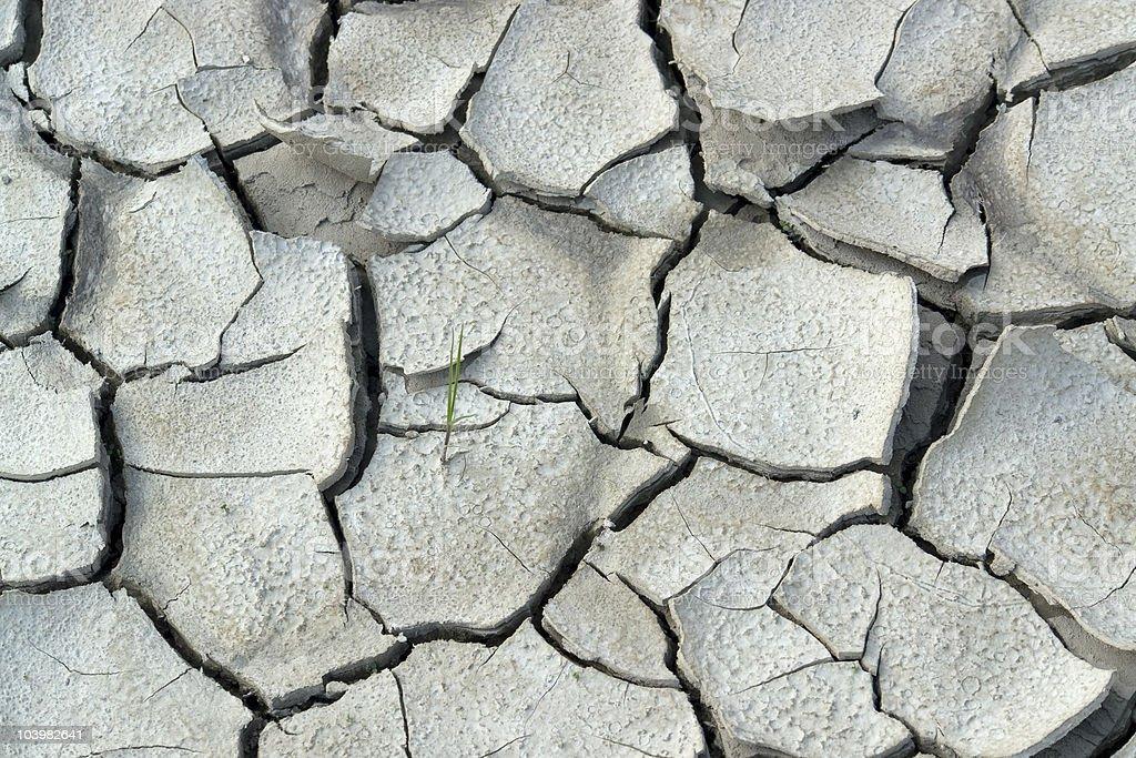extreme arid ground royalty-free stock photo
