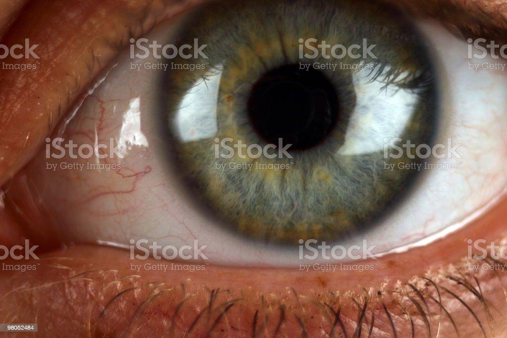 Extreme primo piano dell'occhio umano foto stock royalty-free