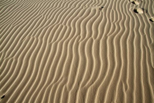 Extreme Close-up of rippled sand stock photo