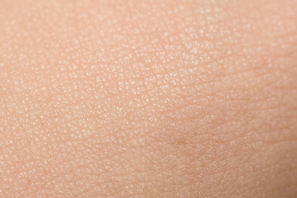 Extreme Close-Up Of Tanned Skin On Male Hand stock photo