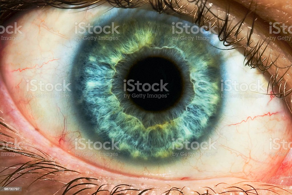 Extreme Closeup royalty-free stock photo