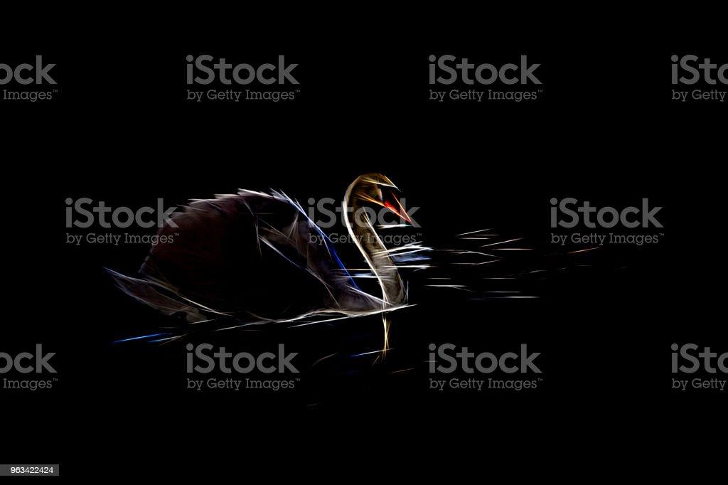 Ekstremalny filtr tworzy sylwetkę czarnego łabędzia na czarnej wodzie - Zbiór zdjęć royalty-free (Czarny łabędź)