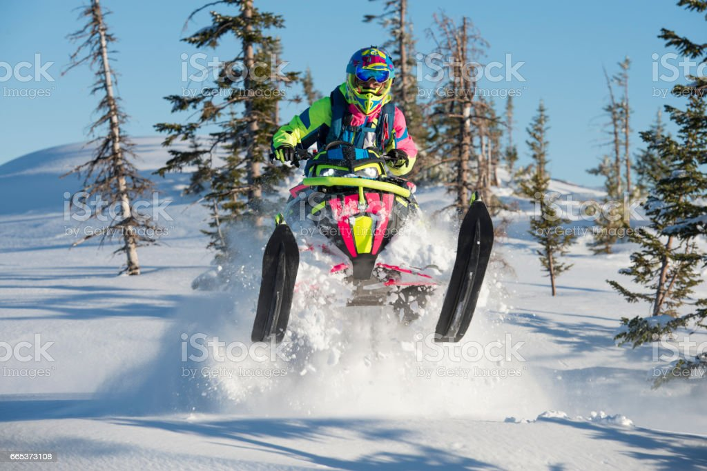Extreme snowmobiling on deep snow in fir forest. stock photo