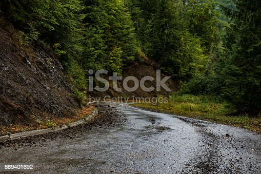 istock Extremely dangerous road on the Tara mountain Serbia,full of curves and holes,rarely used,and very unsafe due to frequent escarpment.On the edge of the rocks,you can see the roots of the trees hanging 869401692
