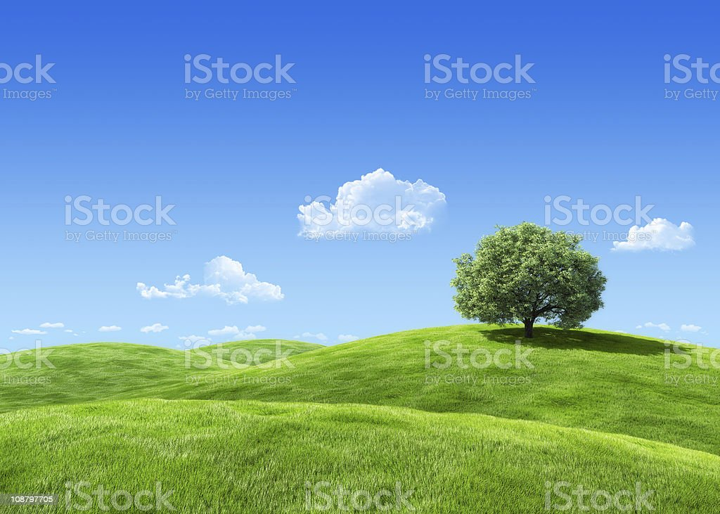 Extremely detailed 7000px 3d render with tree on lea royalty-free stock photo