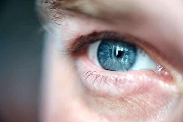 Eye adult man close up stock photo