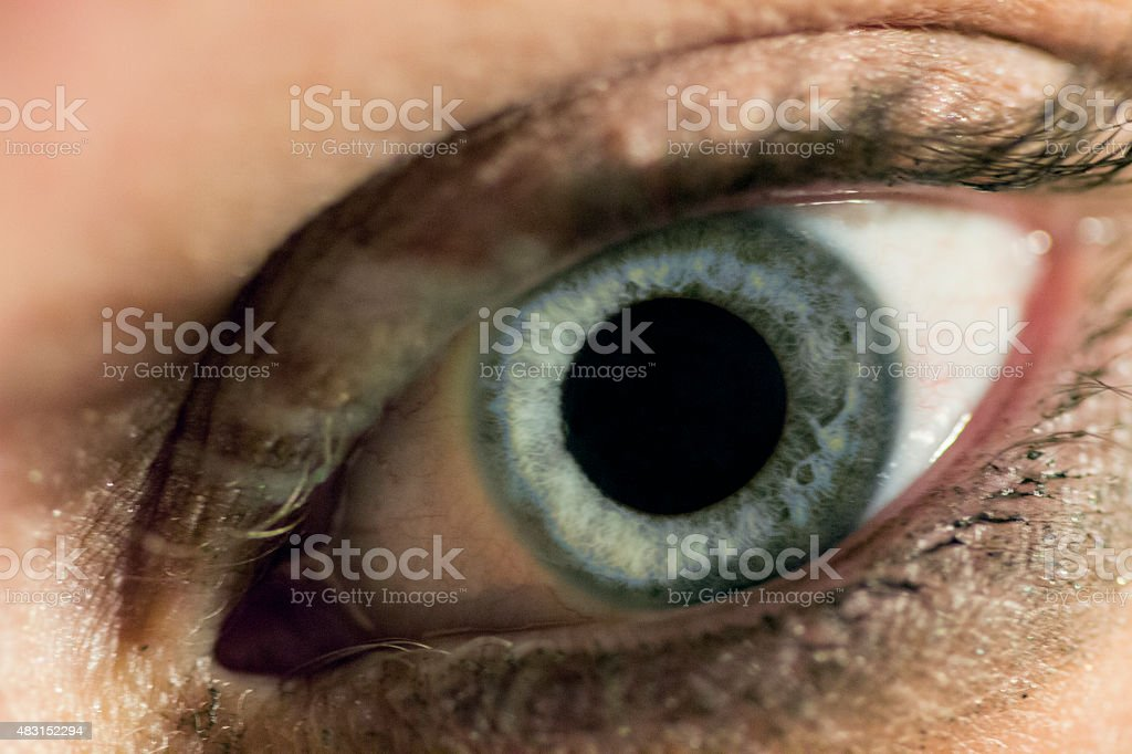 Eye Color Blue stock photo