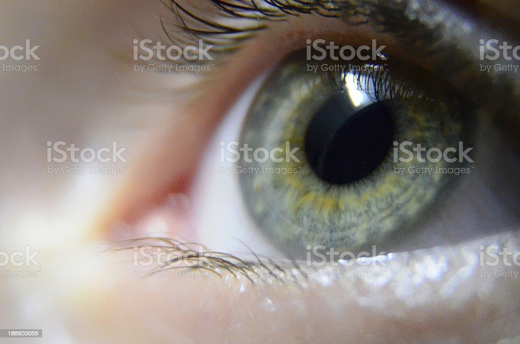 Eye iris macro close up. stock photo