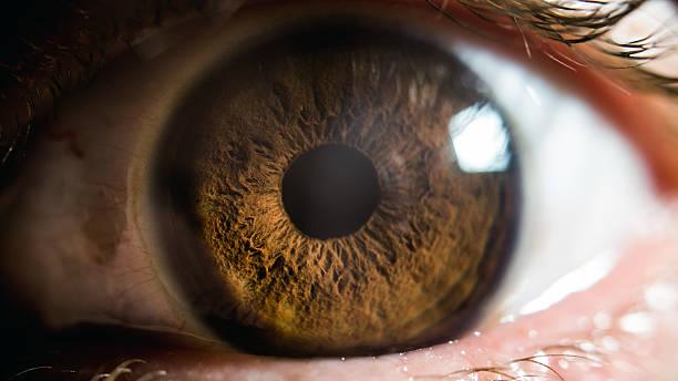 eye macro extreme close up of an eye iris eye stock pictures, royalty-free photos & images